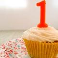 Mijn blog bestaat 1 jaar! Dat wordt gevierd natuurlijk.